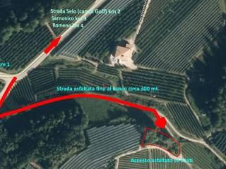 Foto - Terreno agricolo in Vendita a Sarnonico