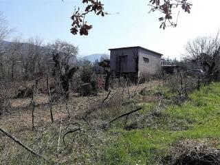 Foto - Rustico via Finocchieto, Poggio Catino