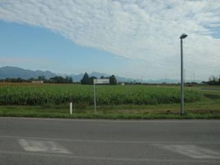 Foto - Terreno agricolo in Vendita a San Quirino