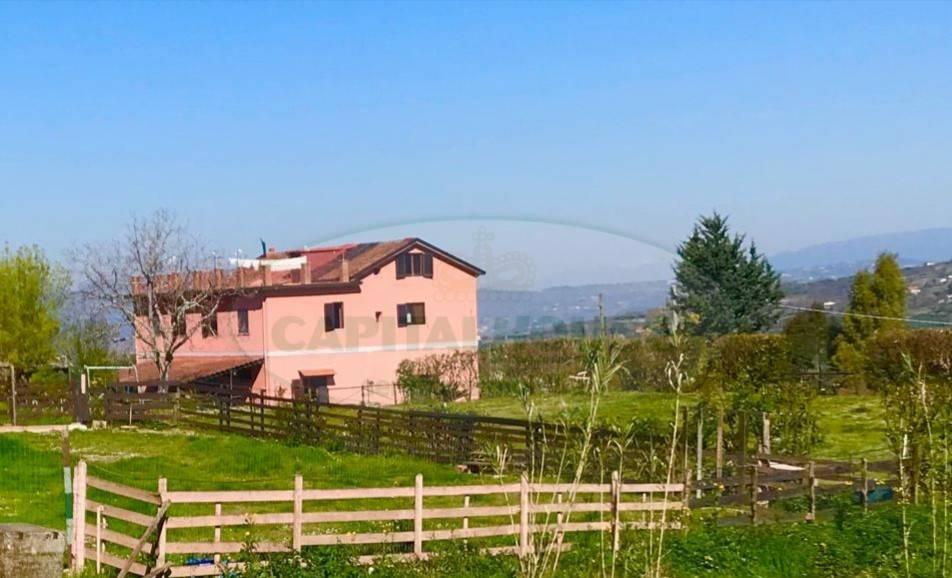 foto  Villa bifamiliare Capellino, Sant'Agata de' Goti