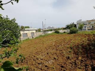 Foto - Terreno edificabile residenziale a Diso