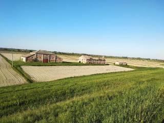 Foto - Terreno agricolo in Vendita a Loreo