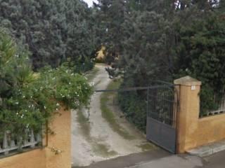 Foto - Terreno agricolo in Vendita a Trepuzzi