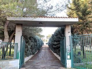 Foto - Rustico Contrada mezzanella, Sammichele di Bari