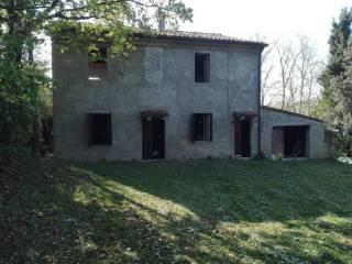 Foto - Casa colonica via Ca' Bernardo 19, Montegridolfo
