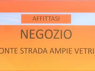 Immobile Affitto Cassola