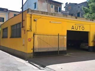 Immobile Affitto Pisa  1 - Centro Storico