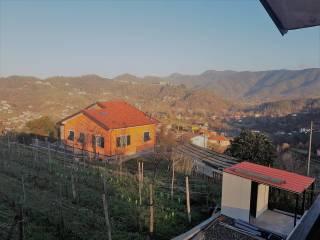 Foto - Villa bifamiliare corso Nazionale 176, Maggiolina, La Spezia