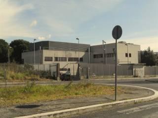 Immobile Vendita Roma 38 - Acilia - Vitinia - Infernetto - Axa - Casal Palocco