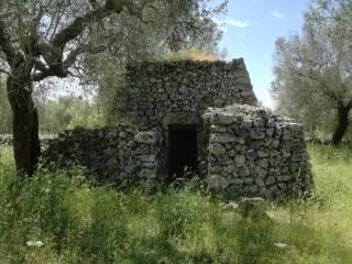 Foto - Terreno agricolo in Vendita a Andrano
