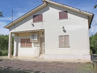Foto - Villa unifamiliare Strada Provinciale Colle dell'Oro, Zagarolo