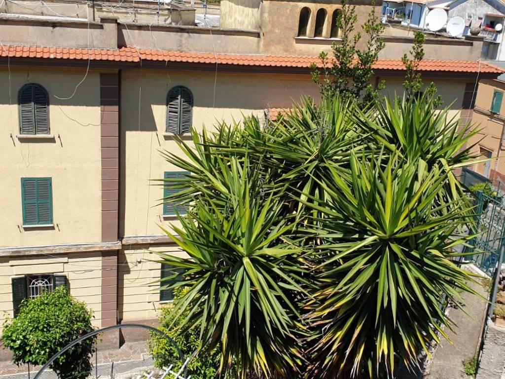 foto esterno 3-room flat viale Vittorio Veneto 15, Frascati