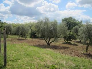 Foto - Terreno agricolo in Vendita a Campagna