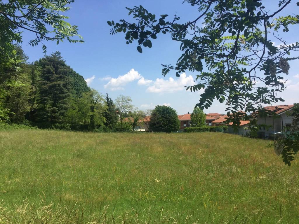 foto terreno Terreno agricolo in Vendita a San Carlo Canavese