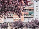 Appartamento Vendita La Spezia  4 - Favaro, Felettino, Migliarina, Montepertico,Valdellora