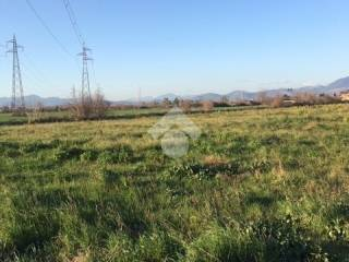 Foto - Terreno agricolo in Vendita a Capua