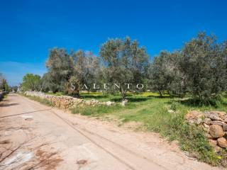Foto - Terreno agricolo in Vendita a Alessano