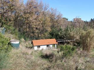Foto - Terreno agricolo in Vendita a Boissano