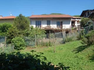 Photo - Dairy farm via Villa 62, San Colombano Belmonte