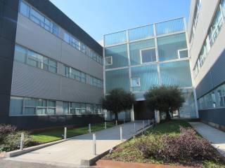 Immobile Affitto Milano 16 - Bonola, Molino Dorino, Lampugnano