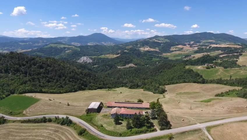 foto  Consorzio agrario in Vendita