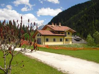 Foto - Villa unifamiliare, nuova, 250 mq, Falcade