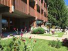 Appartamento Affitto Cesana Torinese