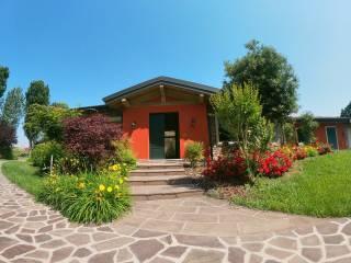 Foto - Villa unifamiliare, nuova, 320 mq, Gadesco-Pieve Delmona