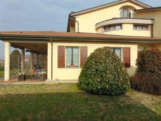 Foto - Villa unifamiliare via C  Monti Perticari 1, Fusignano