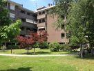 Appartamento Affitto Sedriano