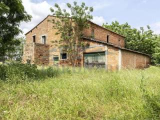 Foto - Cascina, da ristrutturare, 356 mq, Montepulciano Stazione, Montepulciano