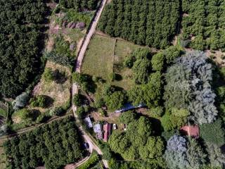 Photo - Farmland for Sale in Caprarola
