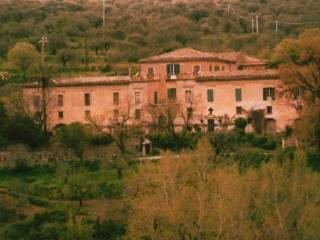 Palazzo / Stabile Vendita San Piero Patti