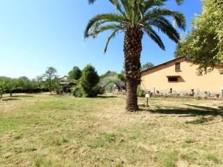 Foto - Villa unifamiliare via Montevirginio, Canale Monterano