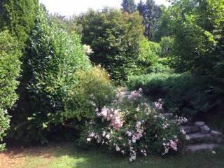 Foto - Villa a schiera via Romeo Lanfranconi, Velate - Avigno, Varese