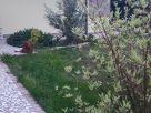 Villetta a schiera Vendita Sant'Angelo di Piove di Sacco