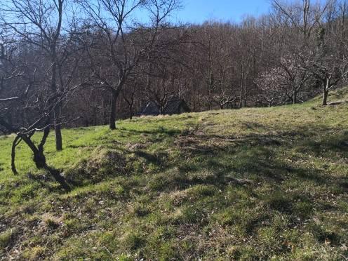 foto terreno Farmhouse Località Serrato, Montoggio