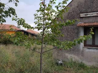 Photo - Farmhouse via Acicastello 12, Pedara