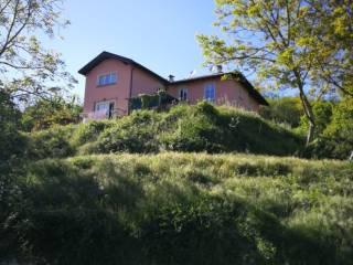 Photo - Apartment excellent condition, ground floor, Rocca Grimalda