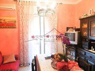 Appartamento Vendita Monte Porzio Catone
