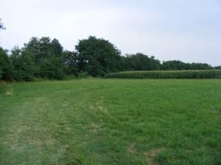 Photo - Agricultural land for Sale in San Secondo di Pinerolo