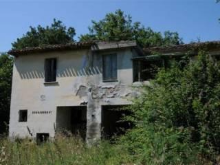 Foto - Rustico, da ristrutturare, 300 mq, Controguerra