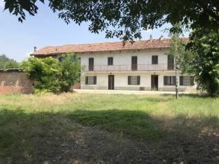 Photo - Dairy farm corso Guglielmo Marconi 47, Magliano Alfieri