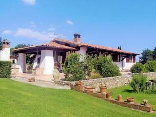 Foto - Villa unifamiliare, ottimo stato, 150 mq, Castiglione della Pescaia