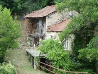Photo - Cottage frazione Cerisola, Garessio