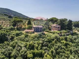 Photo - Farmhouse via di Colonna, 166, Monte Compatri