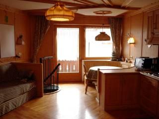 Photo - 2-room flat Antermoia 69, San Martino in Badia