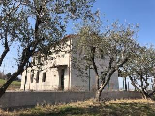 Foto - Casale Strada Marotta 55, San Costanzo
