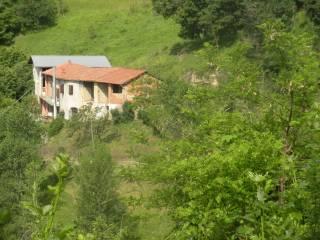 Photo - Dairy farm via Castello, San Michele Mondovì