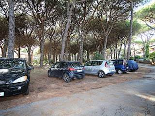 Foto - Appartamento via del Parco, Marina di Grosseto, Grosseto